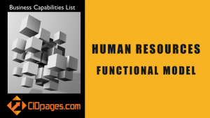 Human resources functional model